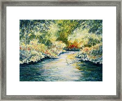 South Branch Of The Little Wolf Framed Print