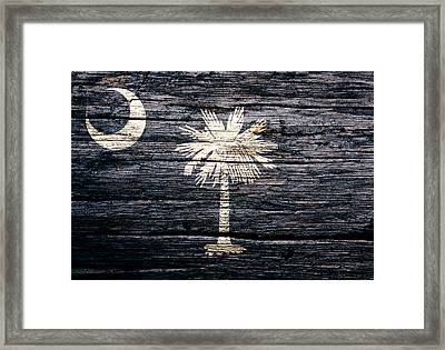 South Carolina 1c Framed Print by Brian Reaves