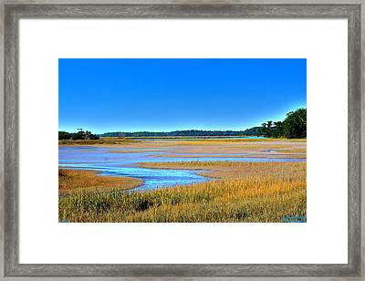 Framed Print featuring the photograph South Carolina Lowcountry H D R by Lisa Wooten