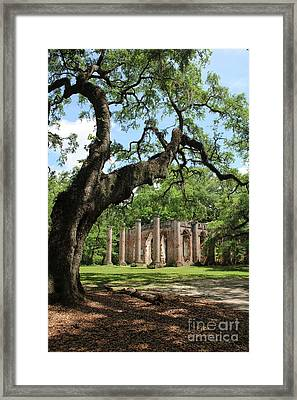 South Carolina Spiritual Framed Print
