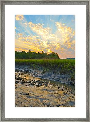 South Carolina Summer Sunrise Framed Print by Margaret Palmer
