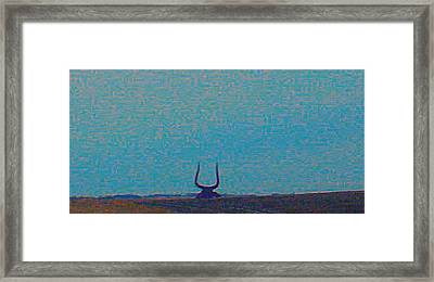 South Dakota Bull Framed Print