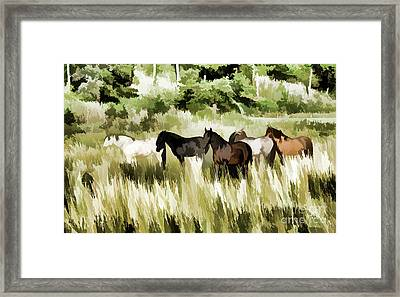 South Dakota Herd Of Horses Framed Print by Wilma Birdwell