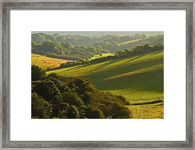 South Downs Framed Print