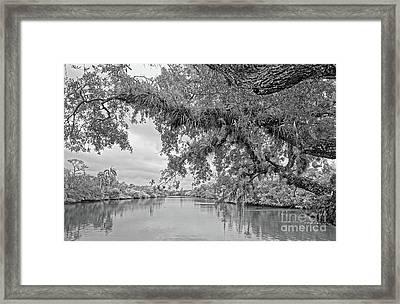 South Fork St. Lucie Framed Print