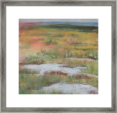 South Jersey Marsh Framed Print