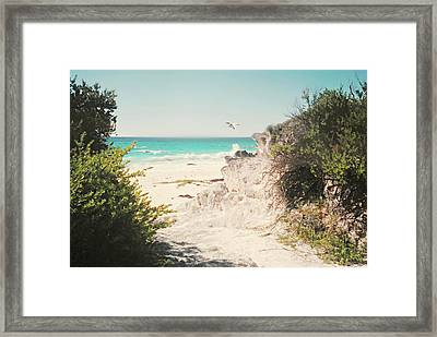 South Shore Bermuda Framed Print