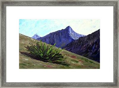 South Side Of O'malley Peak Framed Print