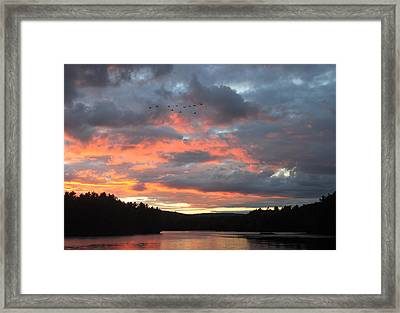 Southbound Geese At Sunset Framed Print by John Burk
