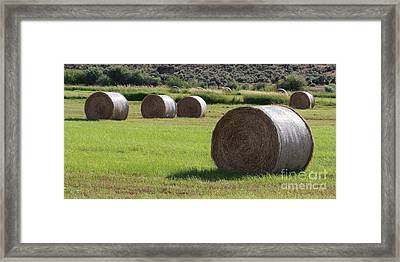 Southeast Framed Print by Rod Giffels