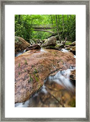 Southern Appalachian Mountain Stream Bridge Framed Print