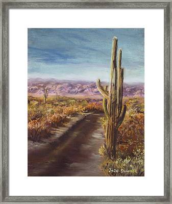 Southern Arizona Framed Print by Jack Skinner
