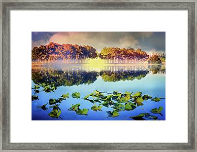 Framed Print featuring the photograph Southern Beauty by Debra and Dave Vanderlaan