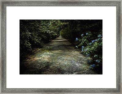 Framed Print featuring the photograph Southern Blue by Jessica Brawley