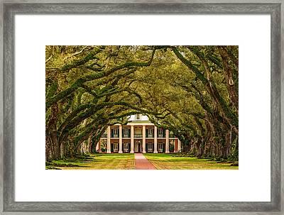 Southern Class - Artistic Framed Print by Steve Harrington