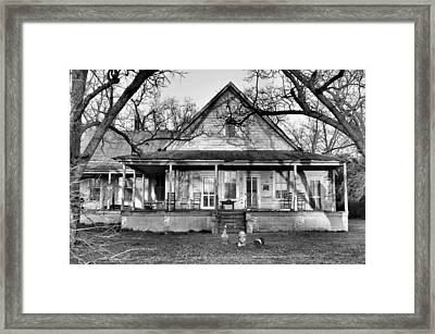 Southern Comfort Framed Print by Jan Amiss Photography
