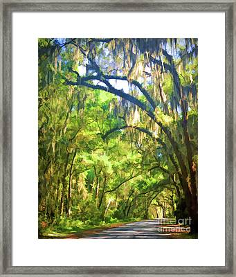 Framed Print featuring the photograph Southern Drive Through Spanish Moss  by Kerri Farley
