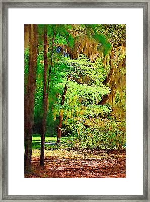 Framed Print featuring the photograph Southern Forest by Donna Bentley