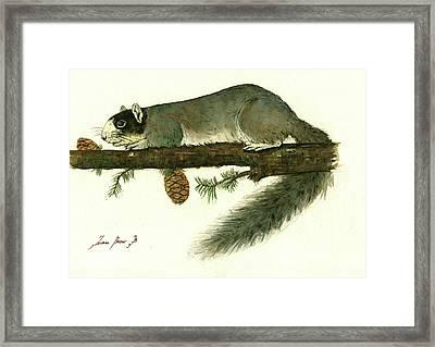 Southern Fox Squirrel  Framed Print