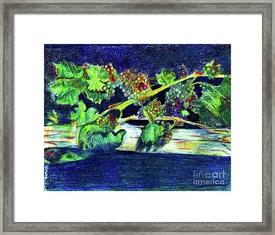 Southern Grapes Framed Print by Anna Mize Bell