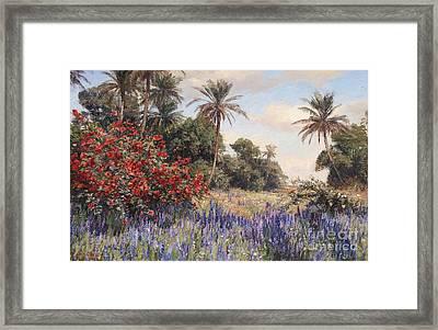 Southern Landscape With Lavender Framed Print