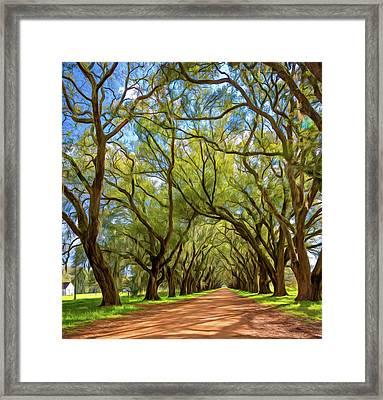 Southern Lane 3 - Paint Framed Print