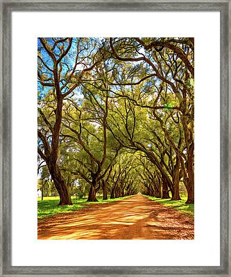 Southern Lane 4 - Paint Framed Print