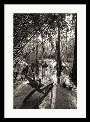 Southern Living Framed Prints