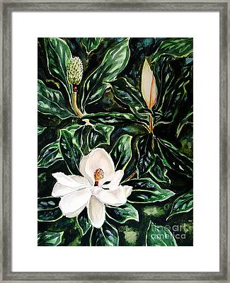 Southern Magnolia Bud And Bloom Framed Print