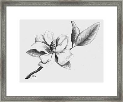 Southern Magnolia Framed Print by Mary Rogers