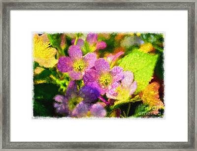 Southern Missouri Wildflowers - Digital Paint  Framed Print by Debbie Portwood