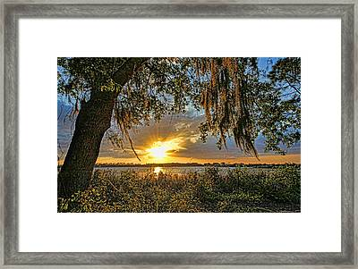 Southern Nights Framed Print by HH Photography of Florida