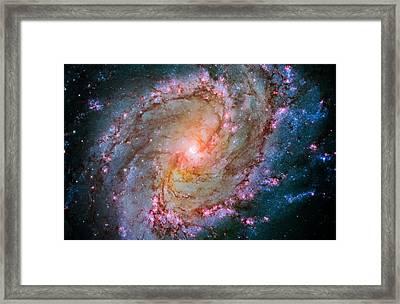 Southern Pinwheel Galaxy - Messier 83 -  Framed Print by Jennifer Rondinelli Reilly - Fine Art Photography