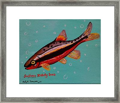 Southern Redbelly Dace Framed Print by Emily Reynolds Thompson