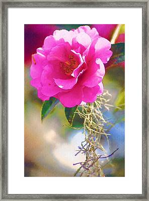 Framed Print featuring the digital art Southern Rose by Donna Bentley