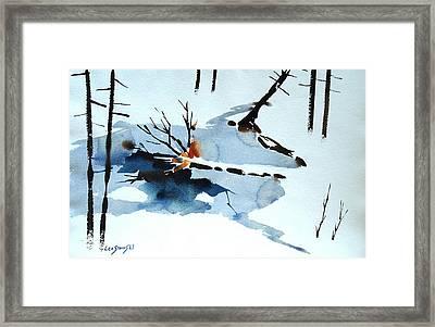 Southern Vermont Roadside Runoff Framed Print