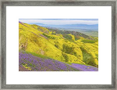 Framed Print featuring the photograph Southern View by Marc Crumpler