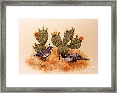 Southwest Art Gambels Quail Framed Print