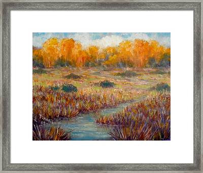 Southwest Autumn Framed Print by Donelli  DiMaria