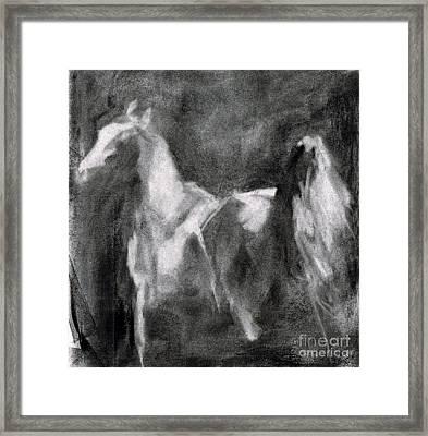 Southwest Horse Sketch Framed Print by Frances Marino