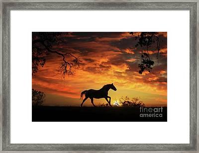 Southwestern Sunset Framed Print