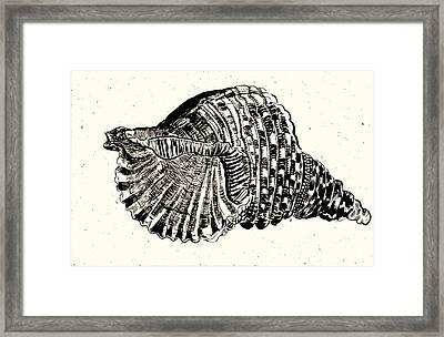 Souvenir  Framed Print by Al Goldfarb