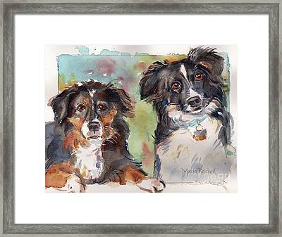 Sox And Vinny Framed Print by Maria's Watercolor