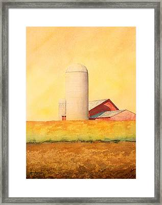Soybean Field Framed Print