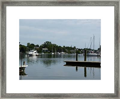 Spa Creek From The Park  Framed Print by Donald C Morgan