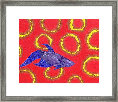 Space Fish Framed Print by Rishanna Finney
