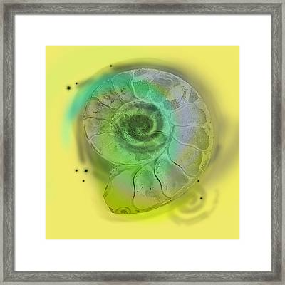 Space Fossil Framed Print