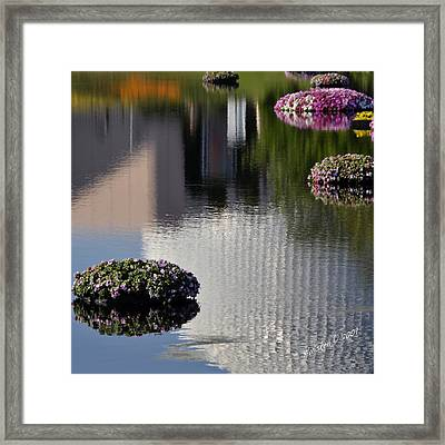 Spaceship Earth Reflection Framed Print by Lyle  Huisken