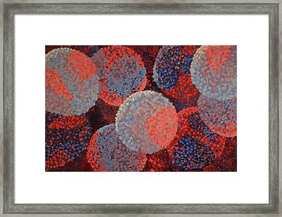 Spacial Hydrangeas Framed Print