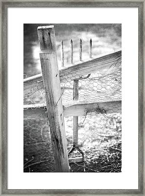 Spading Fork On Chicken Wire Fence In Black And White Framed Print